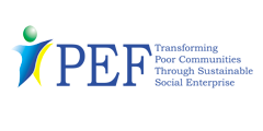 Peace and Equity Foundation